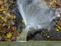 herfst-2012-15
