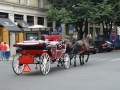 Zomervakantie Tsjechie 2014 (84) - Tour Praag - Duurste straat