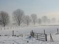winterfotos-2012-10