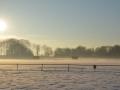 winterfotos-2012-14