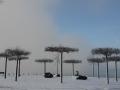 winterfotos-2012-15