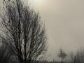 winterfotos-2012-16